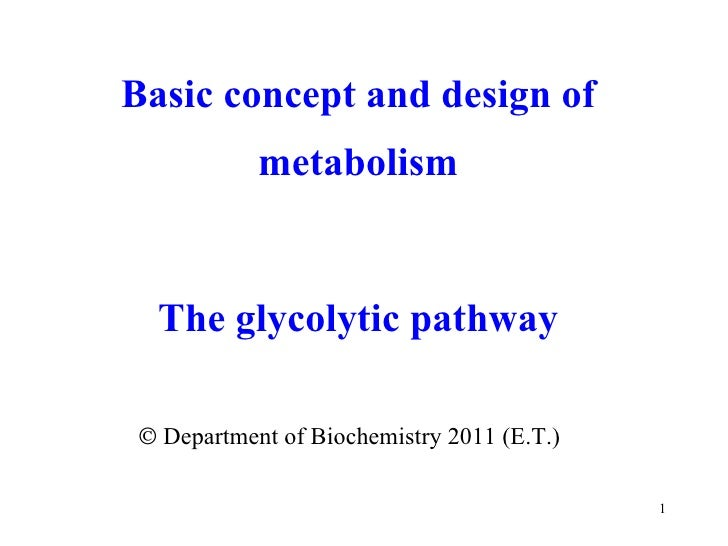    Department of Biochemistry 2011 (E.T.) Basic concept and design of metabolism The glycolytic pathway