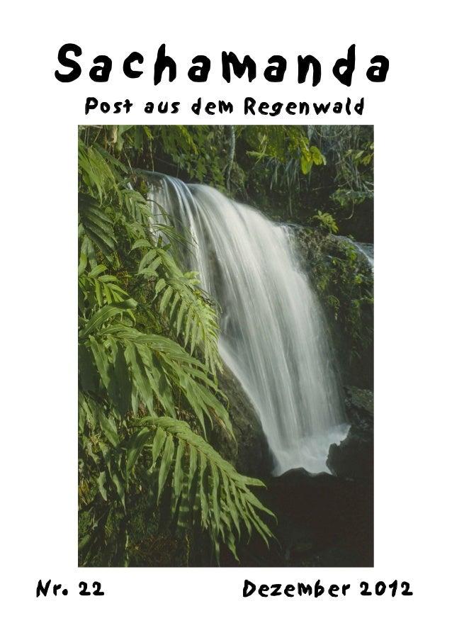 Sachamanda    Post aus dem RegenwaldNr. 22          Dezember 2012