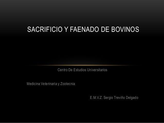 SACRIFICIO Y FAENADO DE BOVINOS                    Centro De Estudios UniversitariosMedicina Veterinaria y Zootecnia      ...