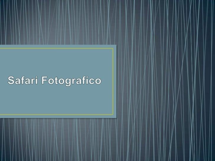 Safari Fotografico<br />