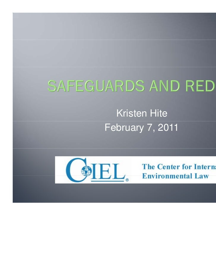 Safeguards and REDD+