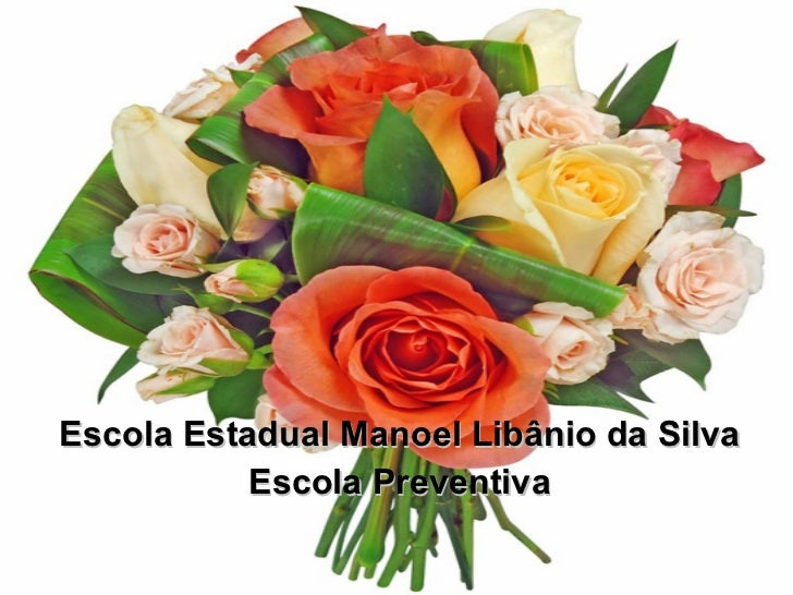 Escola Estadual Manoel Libânio da Silva Escola Preventiva