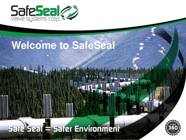 SafeSeal Presentation January 2013