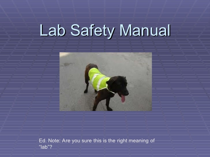 "Lab Safety Manual Ed. Note: Are you sure this is the right meaning of ""lab""?"