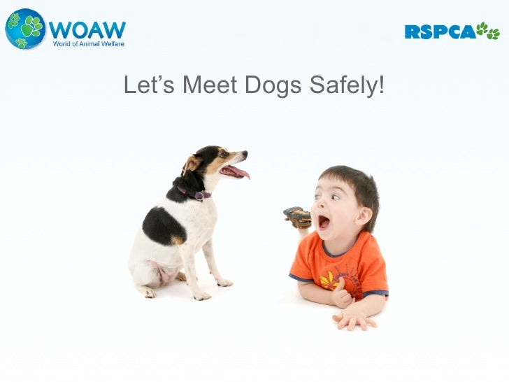 Let's Meet Dogs Safely!