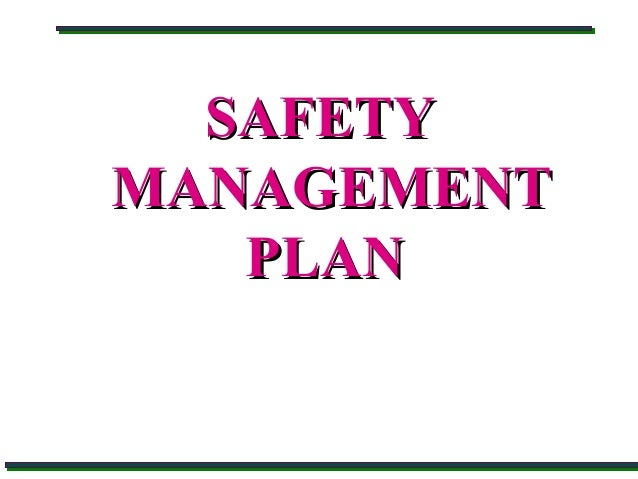 Safety management plan by DGMS