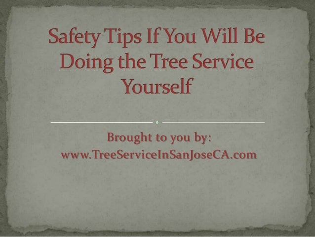 Safety Tips if You Will Be Doing the Tree Service Yourself