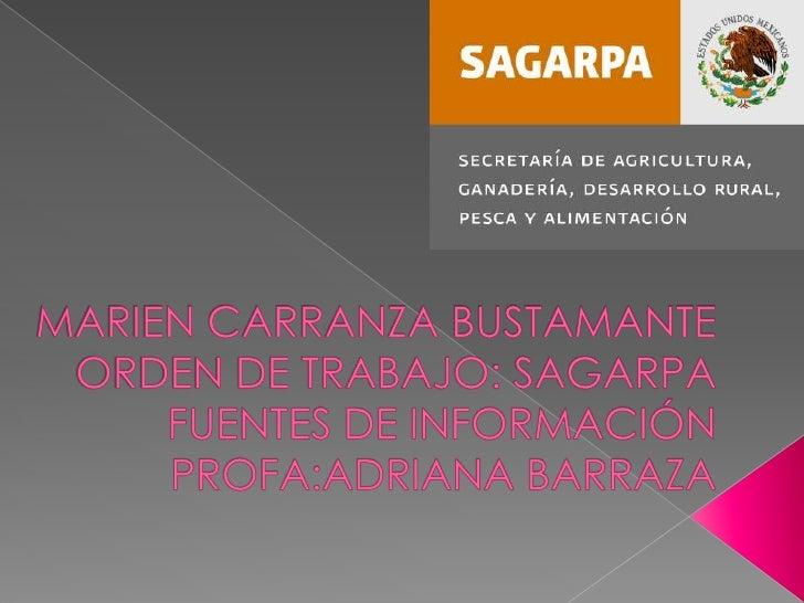 MARIEN CARRANZA BUSTAMANTEORDEN DE TRABAJO: SAGARPAFUENTES DE INFORMACIÓNPROFA:ADRIANA BARRAZA<br />