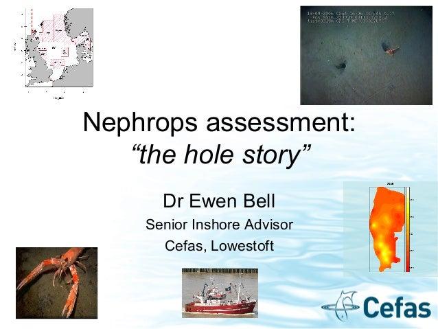 """Nephrops assessment: """"the hole story"""" Dr Ewen Bell Senior Inshore Advisor Cefas, Lowestoft"""