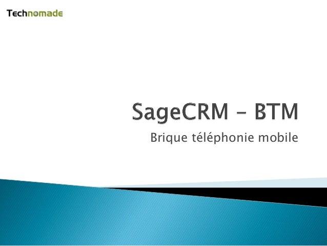 Brique téléphonie mobile