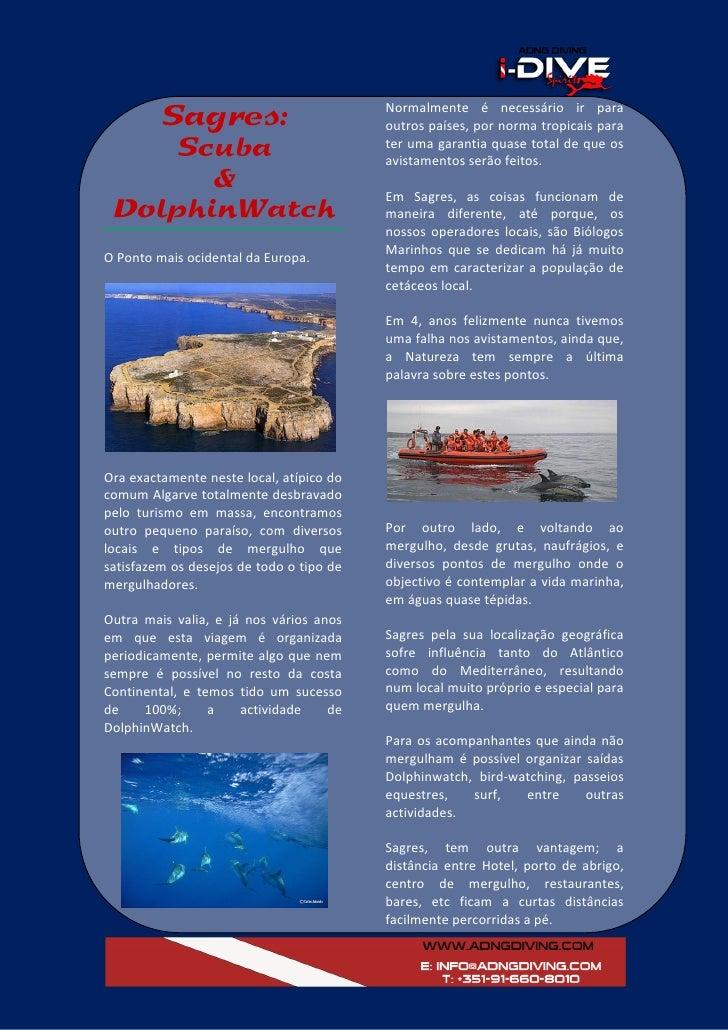 Scuba & Dolphin Watch Program: ADNG DIVING