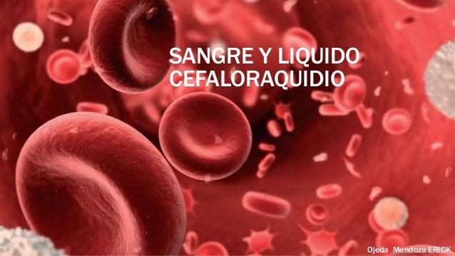 SANGRE Y LIQUIDO CEFALORAQUIDIO  Ojeda Mendoza ERICK