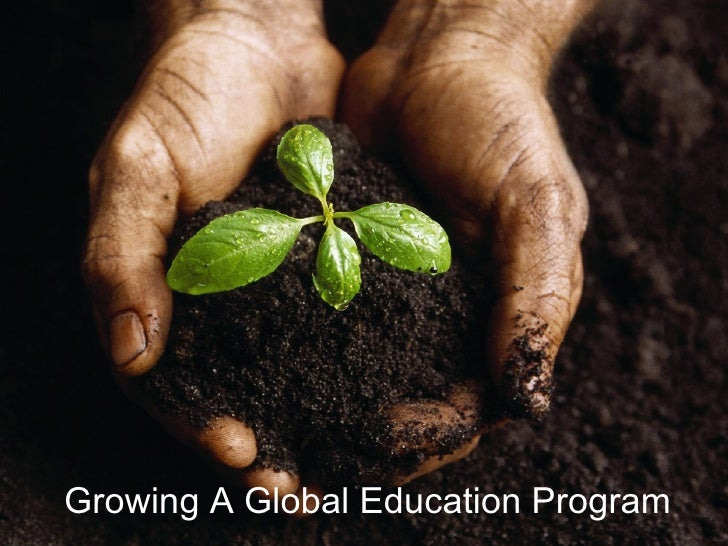 Growing A Global Education Program