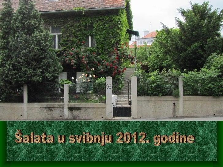 Naš mali raj 2012