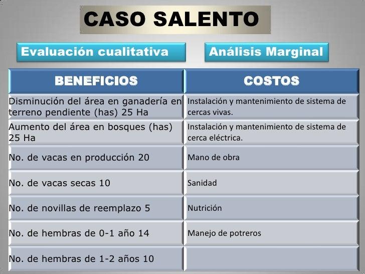 CASO SALENTO<br />Evaluación cualitativa<br />Análisis Marginal<br />
