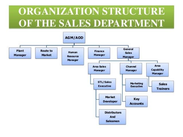 Write my organizational structure essay