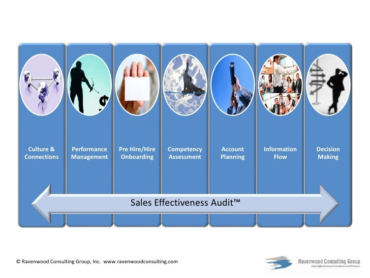 Sales Effectiveness Audit™<br />