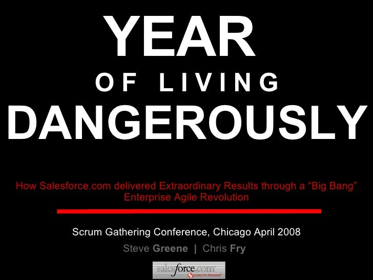 YEAR   O F  L I V I N G DANGEROUSLY Steve  Greene  |  Chris  Fry How Salesforce.com delivered Extraordinary Results throug...