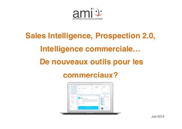 """Sales Intelligence, Prospection 2.0, Intelligence commerciale… De nouveaux outils pour les commerciaux? """" Juin 2014"""