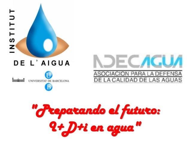 Investigación sobre el agua, Propuestas de futuro y el papel del Instituto