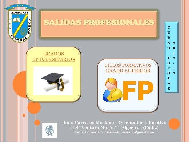 SALIDAS PROFESIONALES                                     C                                                             U ...