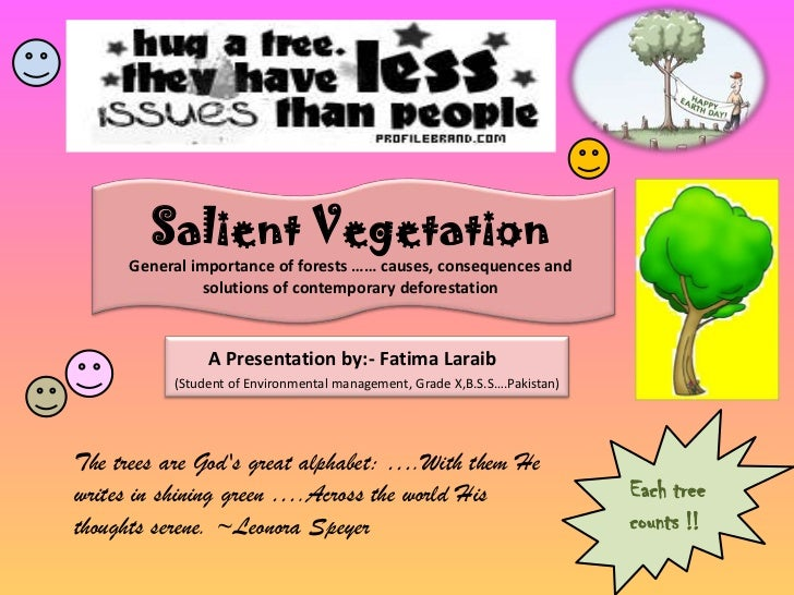 Salient Vegetation<br />General importance of forests …… causes, consequences and solutions of contemporary deforestation<...