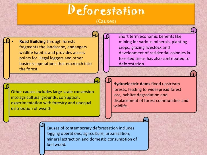 deforestation cause and effects Tropical deforestation and climate change edited by paulo moutinho & stephan schwartzman tropical deforestation deforestation 3 greenhouse effect 4.
