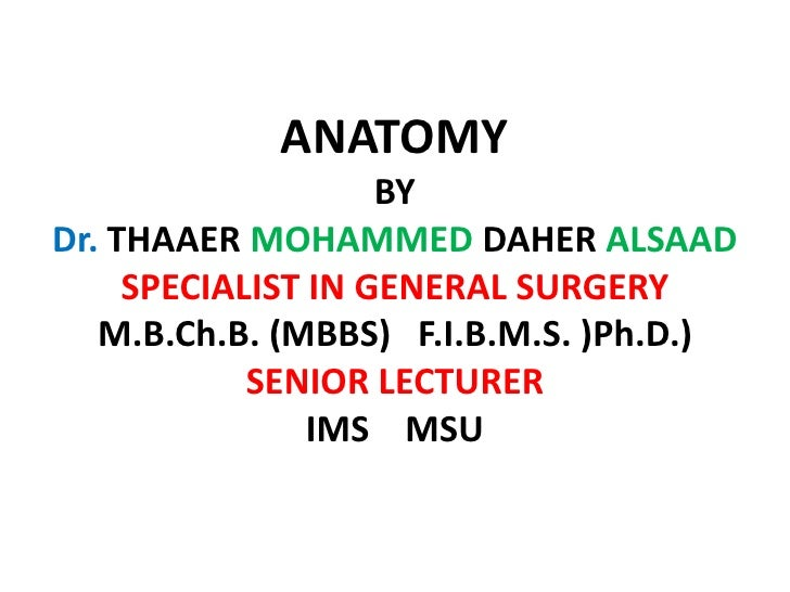 ANATOMY                     BY Dr. THAAER MOHAMMED DAHER ALSAAD      SPECIALIST IN GENERAL SURGERY    M.B.Ch.B. (MBBS) F.I...
