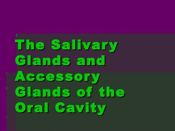 T he Salivar yGlands andAccessor yGlands of theOr al Cavity