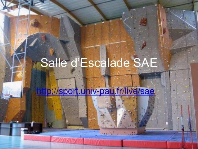 Salle d'Escalade SAEhttp://sport.univ-pau.fr/live/sae