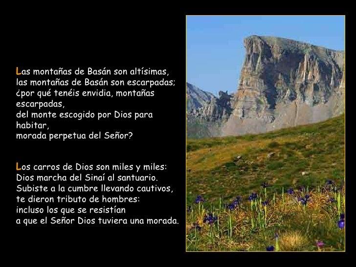 L as montañas de Basán son altísimas, las montañas de Basán son escarpadas; ¿por qué tenéis envidia, montañas escarpadas, ...