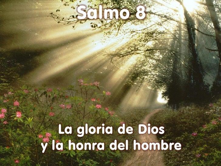 Salmo 8   La gloria de Diosy la honra del hombre
