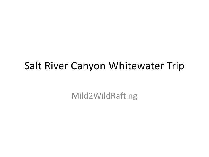 Salt River Canyon Whitewater Trip<br />Mild2WildRafting<br />