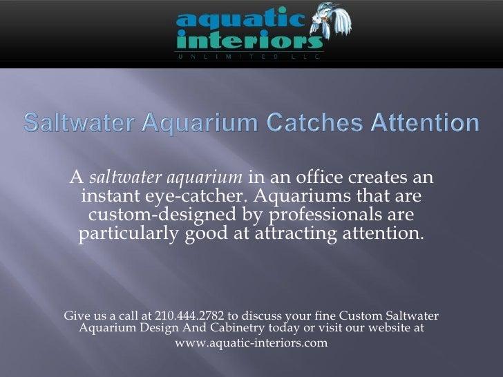 Custom Designed Saltwater aquarium catches attention
