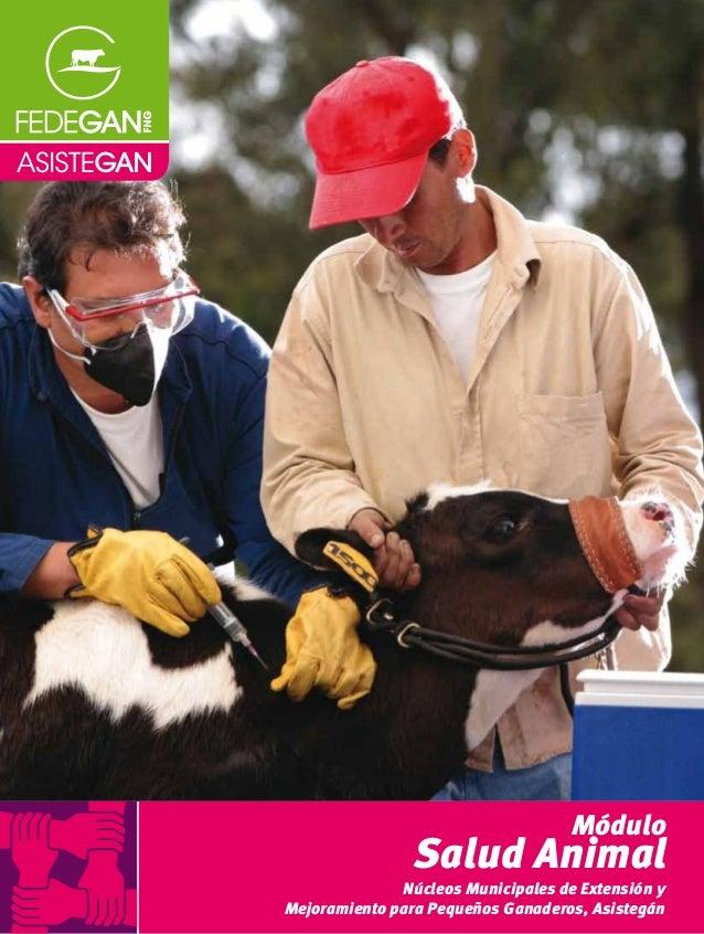 Módulo Salud Animal ASISTEGÁN-MóduloSaludAnimal Núcleos Municipales de Extensión y Mejoramiento para Pequeños Ganaderos, A...