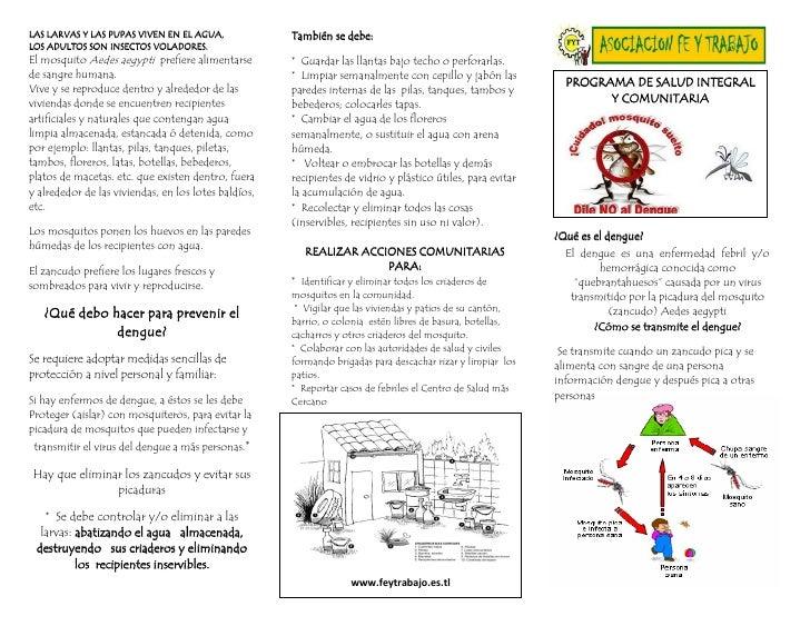 LAS LARVAS Y LAS PUPAS VIVEN EN EL AGUA,              También se debe: LOS ADULTOS SON INSECTOS VOLADORES. El mosquito Aed...