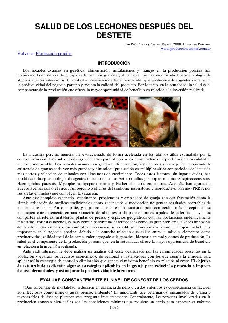 Salud de los lechones desp del destete