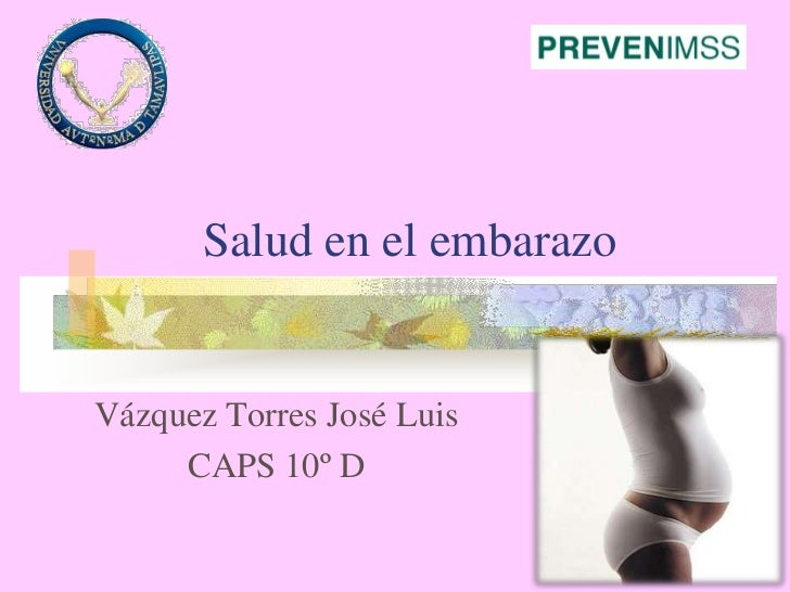 Salud en el embarazo<br />Vázquez Torres José Luis<br />CAPS 10º D <br />