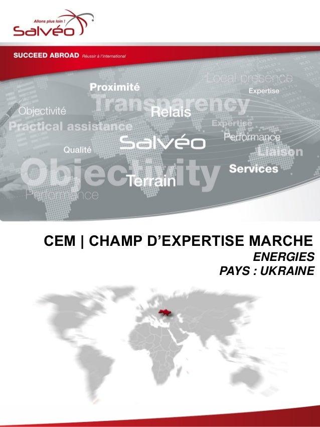 Groupe SALVEO - Champs d'Expertise Marche - energies Ukraine 2013/2014