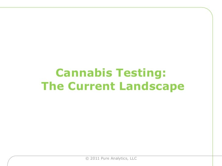Cannabis Testing:The Current Landscape <br />© 2011 Pure Analytics, LLC<br />