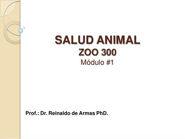 SALUD ANIMAL ZOO 300 Módulo #1 Prof.: Dr. Reinaldo de Armas PhD.