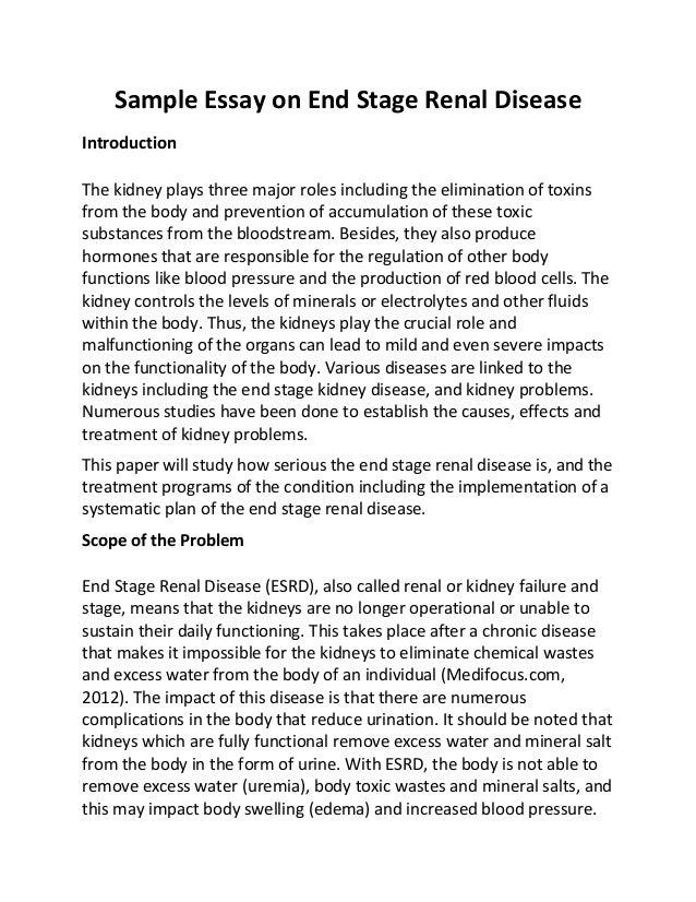 essay on type 2 diabetes