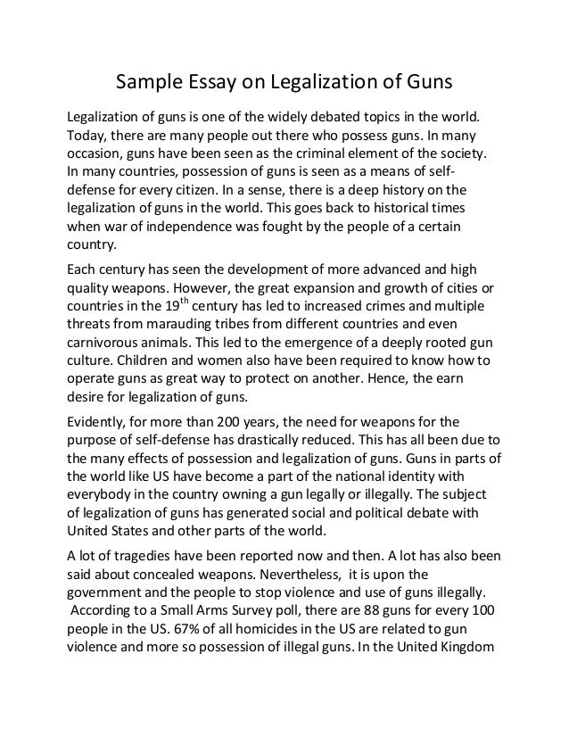 essay on gun control debate