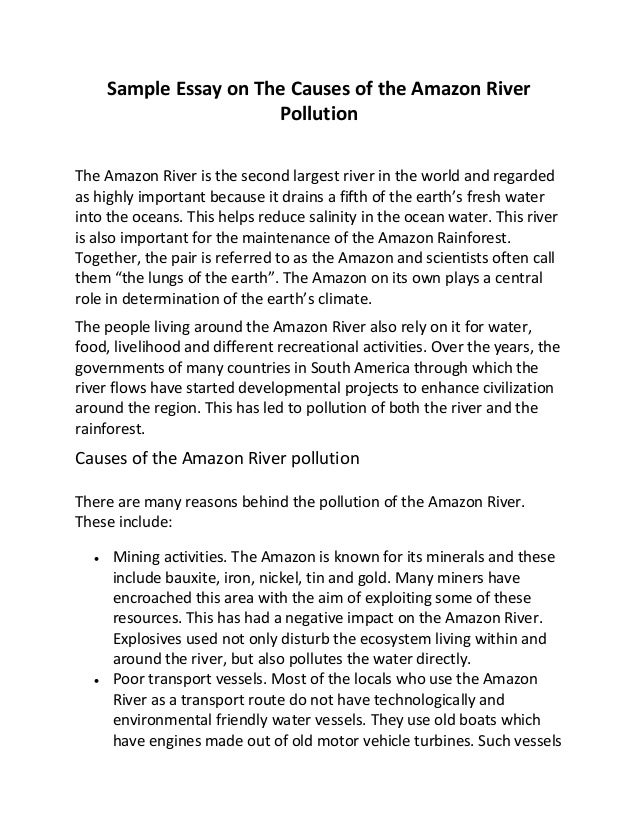water pollution causes essays Environmental pollution refers to the introduction of harmful pollutants into the environment the major types of environmental pollution are air pollution, water.