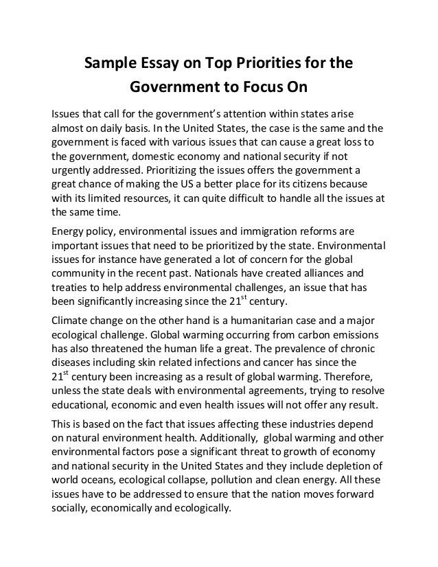 Government service essay