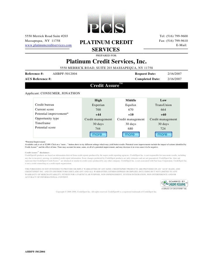 PCS Credit Report