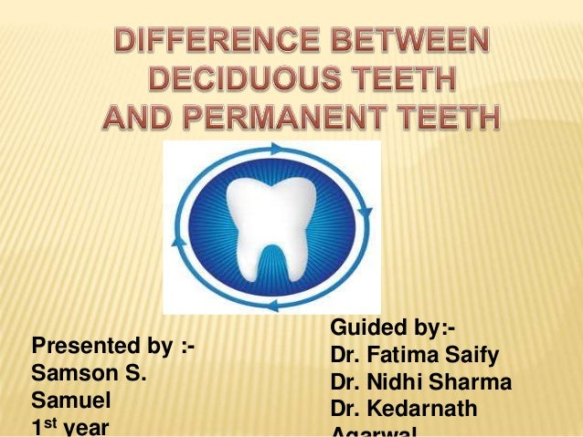difference between primary and secondary tooth