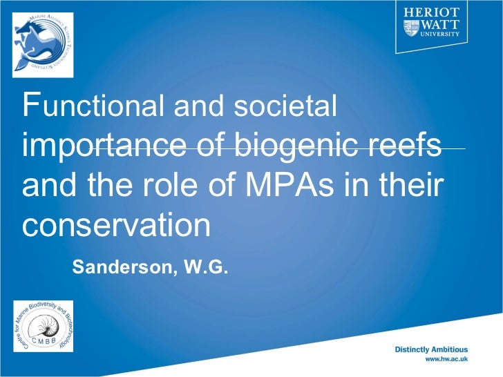 Functional and societalimportance of biogenic reefsand the role of MPAs in theirconservation   Sanderson, W.G.