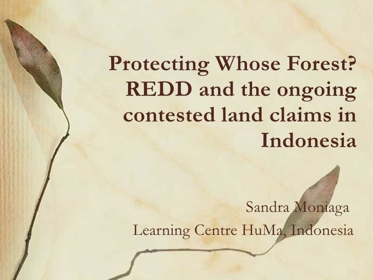 Protecting Whose Forest? REDD and the ongoing contested land claims in Indonesia Sandra Moniaga  Learning Centre HuMa, Ind...