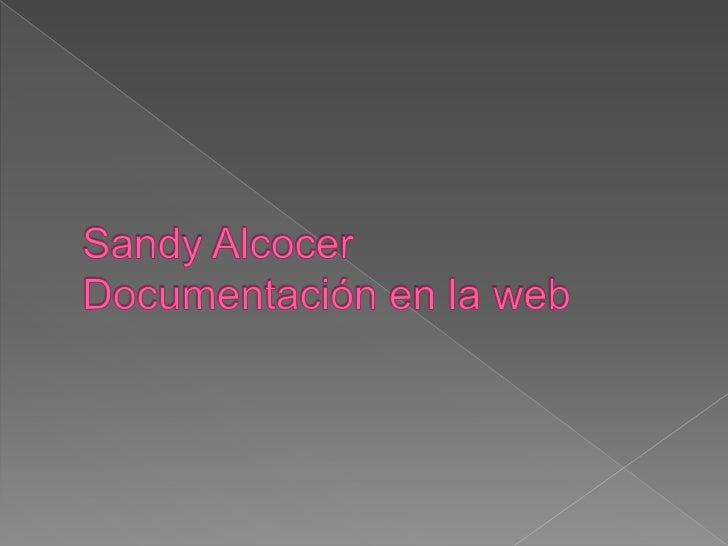 Sandy AlcocerDocumentación en la web <br />